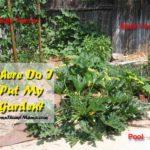 Where do I put my garden?