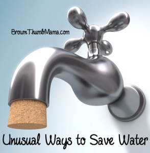 Unusual Ways to Save Water: BrownThumbMama.com