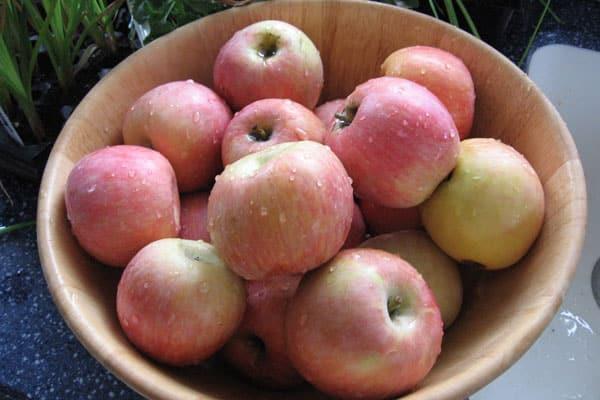 Crock Pot Apple Butter: BrownThumbMama.com