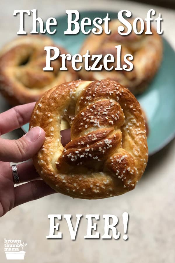 These are the best soft pretzels you'll ever eat. They have a little bit of crunch, and a soft, tender interior that tastes great with homemade cheese sauce, grainy mustard, and even spaghetti sauce. Make them today!