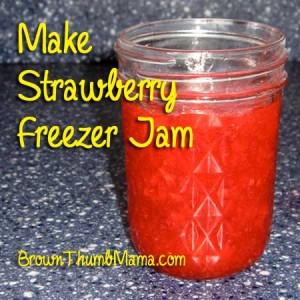 Make Strawberry Freezer Jam: BrownThumbMama.com