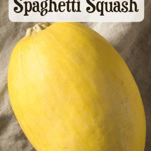 spaghetti squash on linen cloth