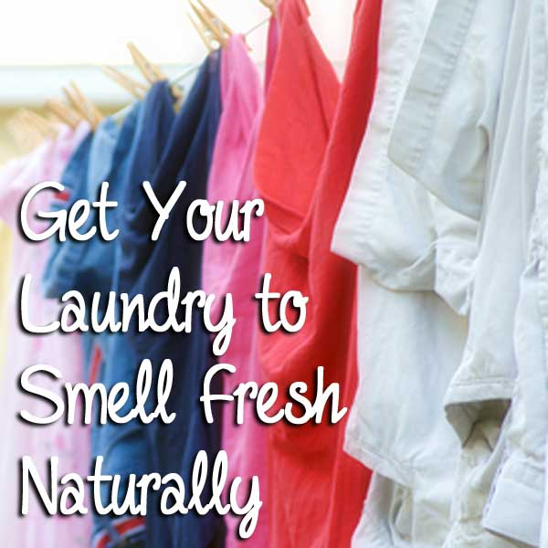 Get Your Laundry to Smell Fresh Naturally