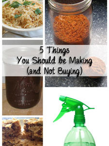 5 Things You Should Be Making (Not Buying): BrownThumbMama.com