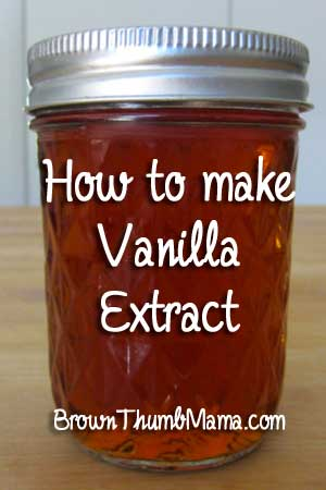 Make vanilla extract: BrownThumbMama.com