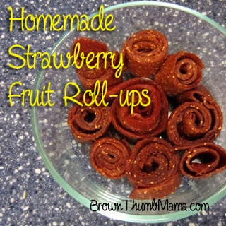 Homemade Fruit Leather aka Fruit Roll-ups