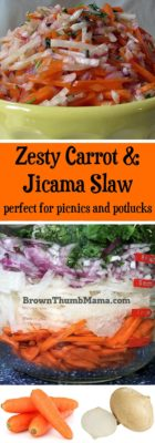 I'm crazy for the zesty flavors in this refreshing side dish! Kids love Carrot & Jicama Slaw and it's perfect with chicken or burgers. Dairy & gluten free.