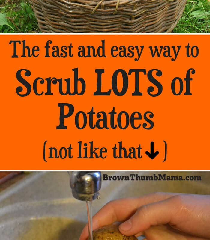 The Fast and Easy Way to Wash Potatoes