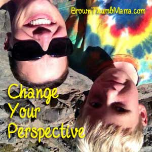 Change your perspective: BrownThumbMama.com