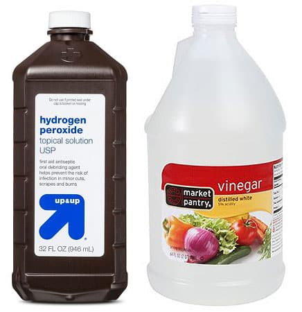 hydrogen peroxide and white vinegar bottles