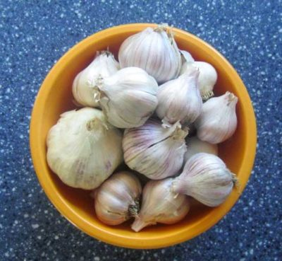 While it's impossible to have too much garlic, you want to preserve it before it begins to sprout. It's easy to freeze garlic with this one simple ingredient!