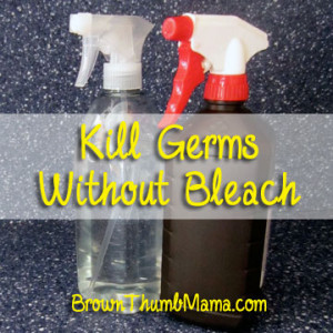 Kill germs without bleach brownthumbmama com