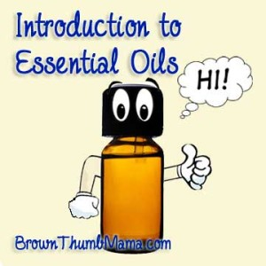 Intro to Essential Oils: BrownThumbMama.com