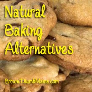 Natural Baking Alternatives: BrownThumbMama.com