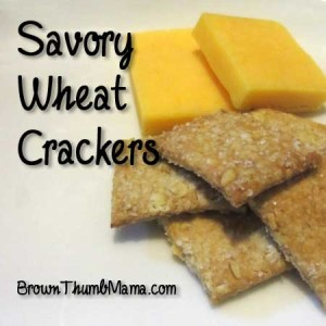 Savory Wheat Crackers: BrownThumbMama.com