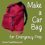Make a Car Bag for Emergency Preparedness