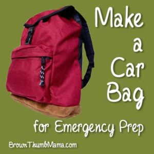 Make a Car Bag for Emergency Preparedness: BrownThumbMama.com