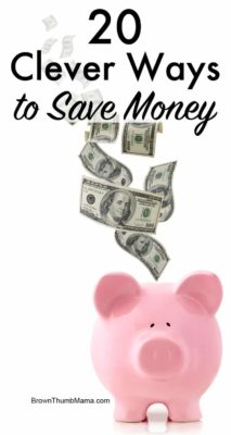 20 Clever Ways to Save Money: BrownThumbMama.com