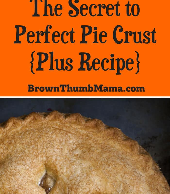 The Secret to Perfect Pie Crust (Plus Recipe)