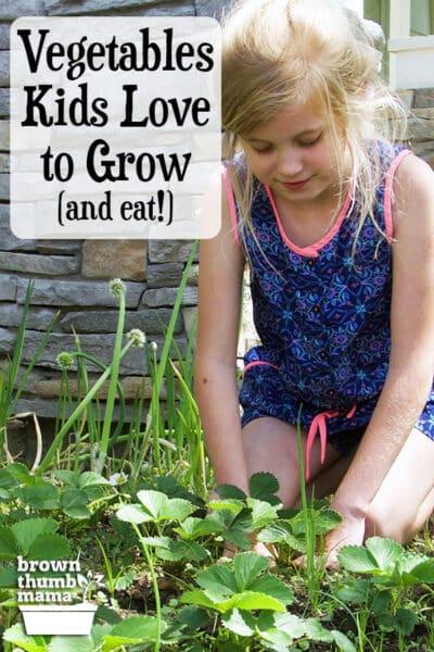 girl planting strawberries