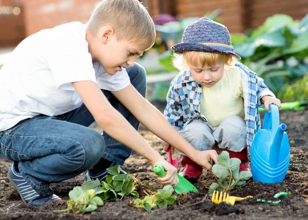 Vegetables and Fruits Kids Love to Grow