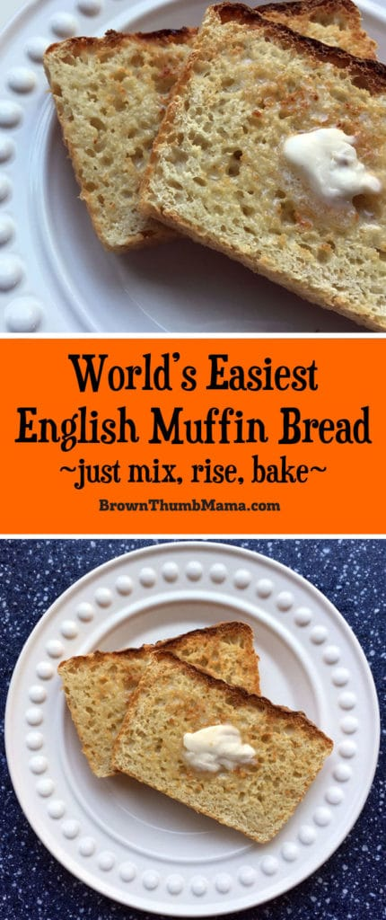 Want homemade english muffins without all the work? This easy recipe for english muffin bread is perfect for you. Just mix, rise, and bake!