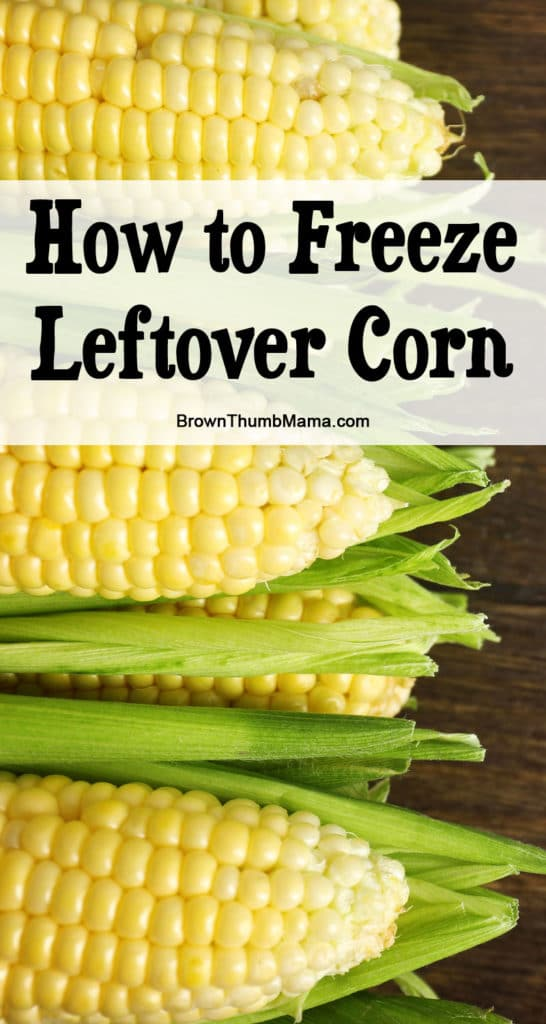 How to Freeze Leftover Corn: BrownThumbMama.com