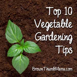 Vegetable Gardening Tips: BrownThumbMama.com