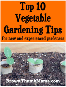 Top 10 Vegetable Gardening Tips for New & Experienced Gardeners: BrownThumbMama.com