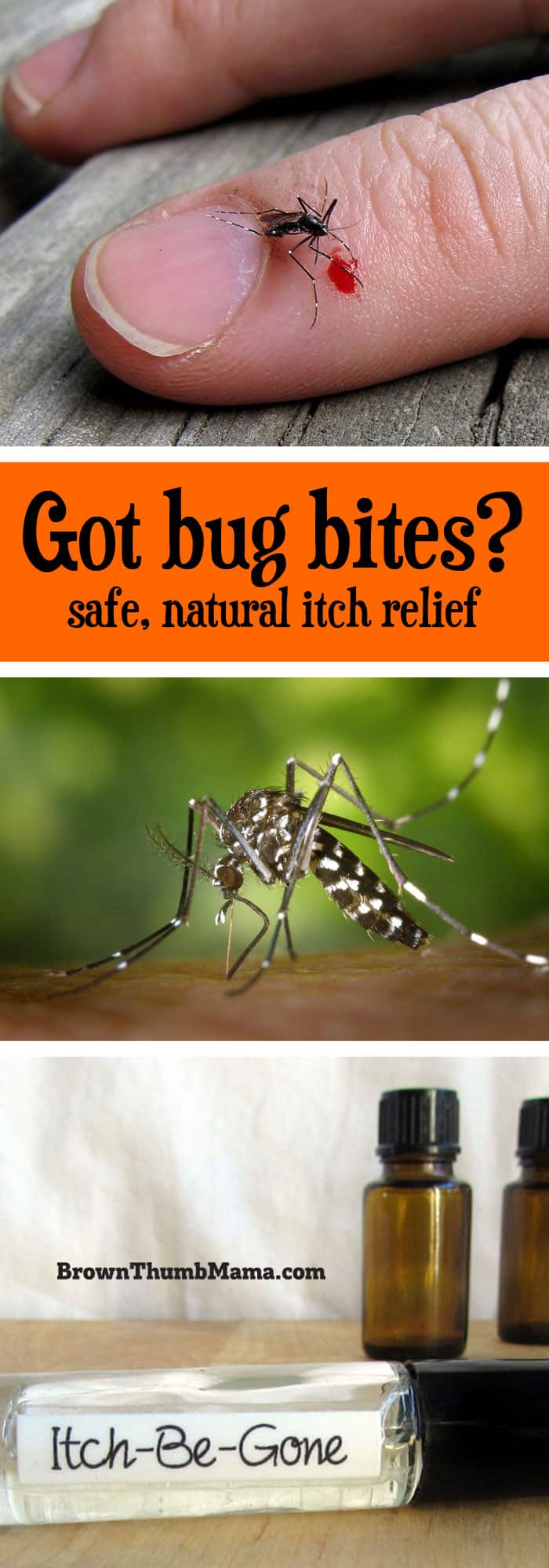 Natural Bug Bite Relief Brown Thumb Mama