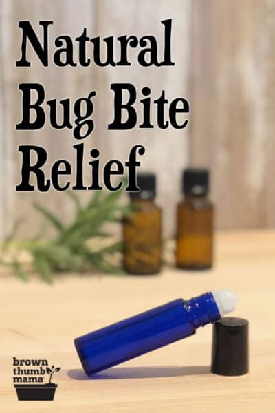 essential oil roller and bottles