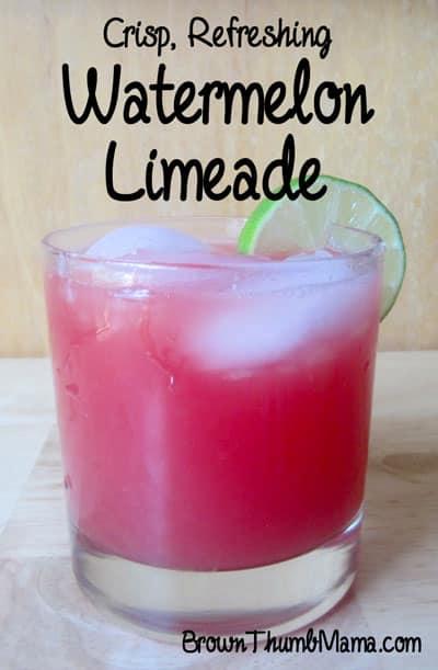 Watermelon Limeade: BrownThumbMama.com