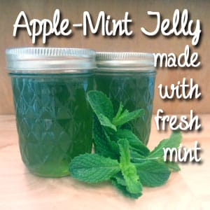 Apple-Mint Jelly with Fresh Mint