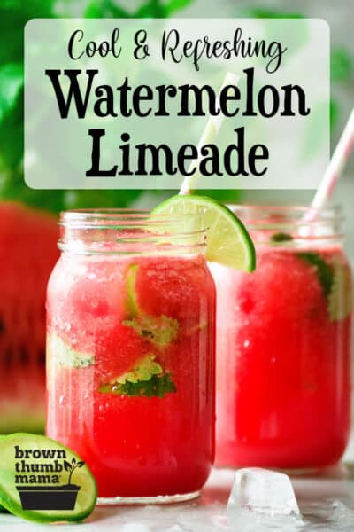 watermelon limeade in glasses with lime garnish