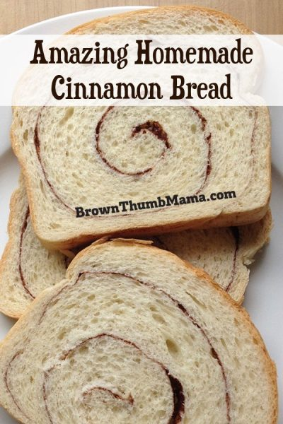 Your taste buds will flip over this easy, homemade cinnamon bread. It's amazing toasted with butter or made into a PB&J.
