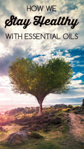 How we stay healthy with essential oils: BrownThumbMama.com