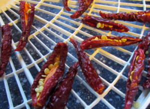 How to Dry Jalapeno Peppers: BrownThumbMama.com