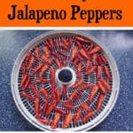 How to Dehydrate Jalapeno Peppers