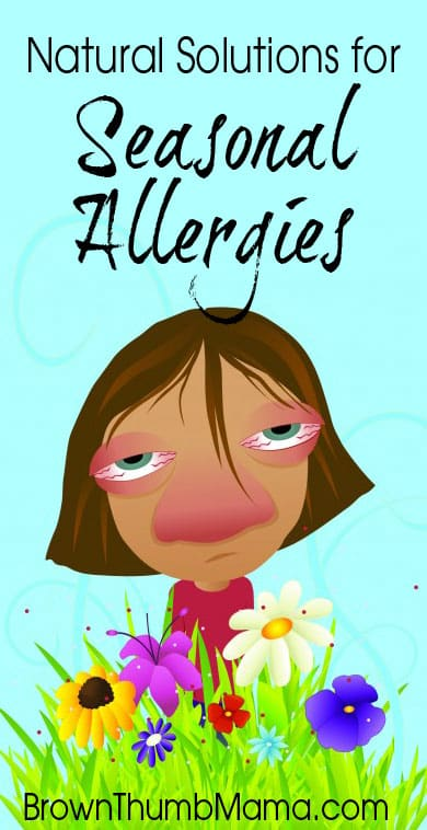 Stop an Allergy Attack Naturally