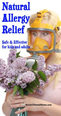Natural Allergy Relief for Kids & Adults: BrownThumbMama.com