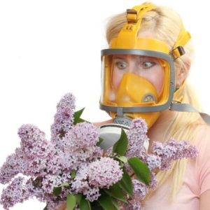 woman wearing mask carrying lilacs