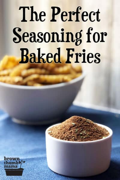 french fry seasoning in foreground and fries in background