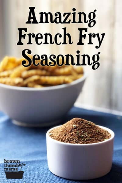 french fry seasoning in bowl with fries in background
