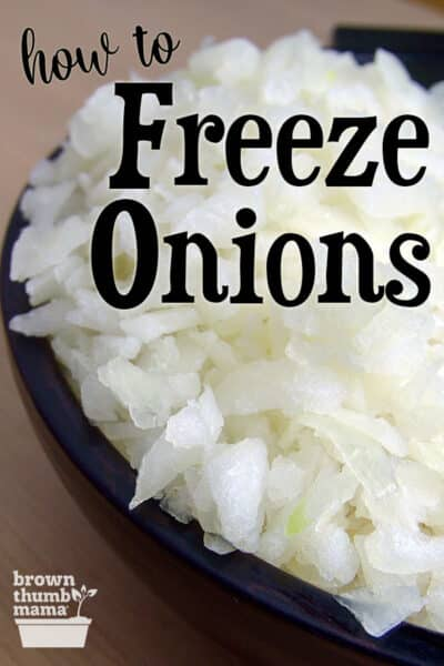 bowl of frozen chopped onions