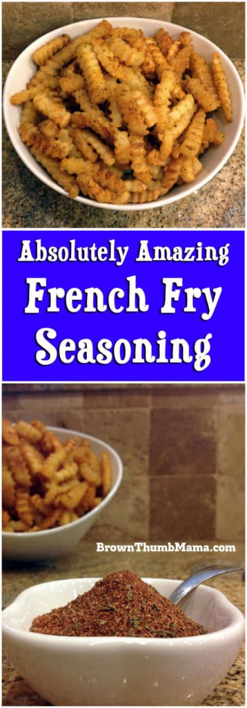 Amazing French Fry Seasoning: BrownThumbMama.com