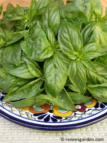One Secret Ingredient to Make Pesto on the Cheap