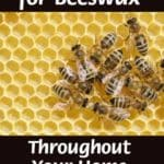 8 Uses for Beeswax Throughout Your Home