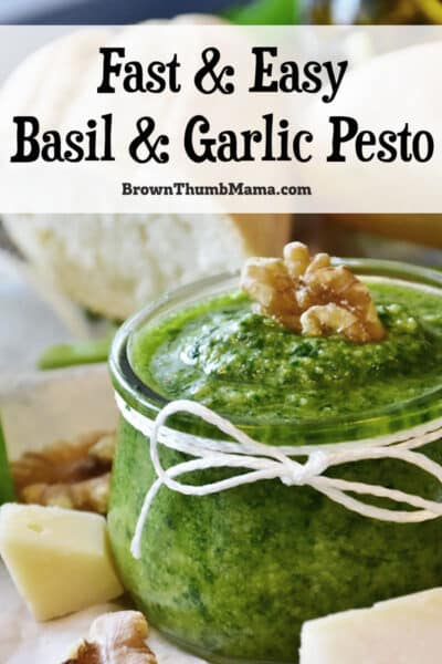 jar of basil and garlic pesto