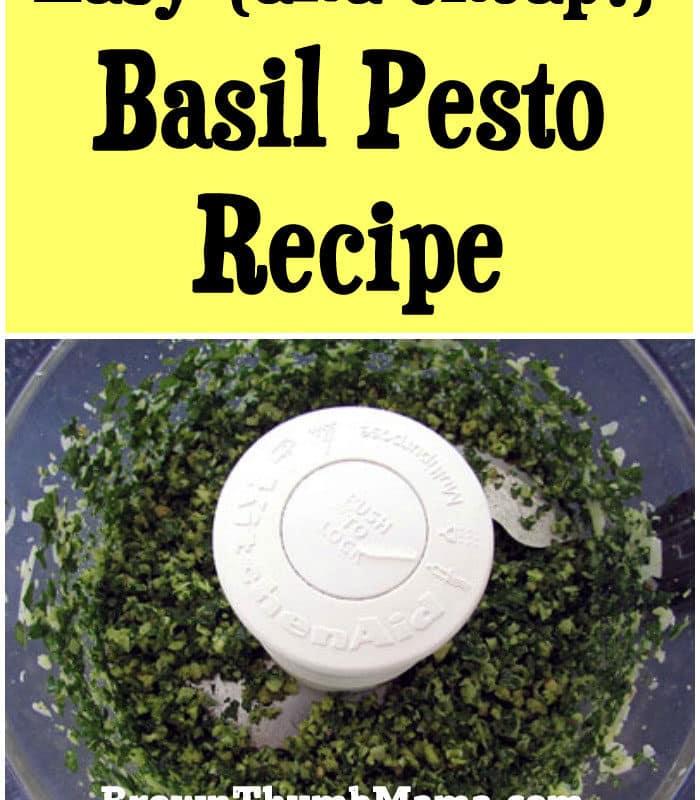 Easy (and Cheap!) Pesto Recipe