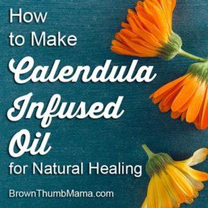 Make Calendula-Infused Oil for Natural Healing: BrownThumbMama.com